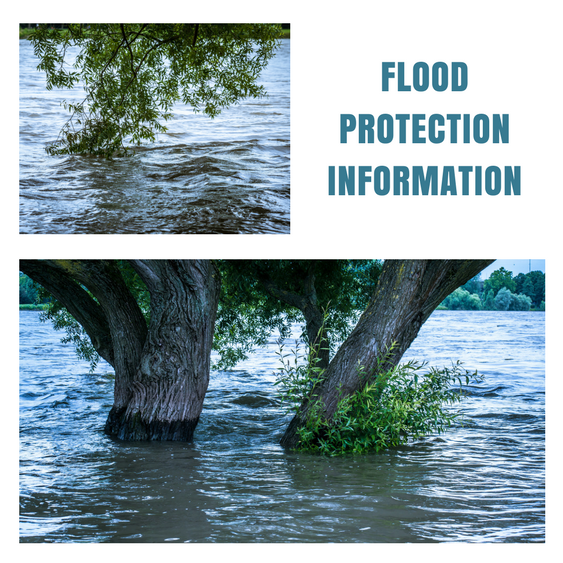 "Images of trees in flood water with ""Flood Protection Information"""